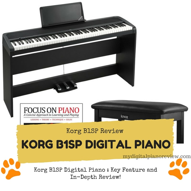 Korg b1sp digital piano key feature and in depth review for Korg or yamaha digital piano